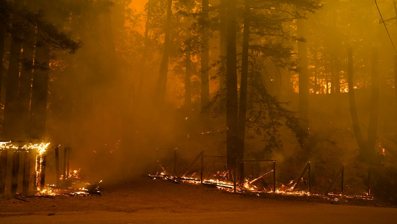 'We're drying the fuels': How climate change is making wildfires worse in the West