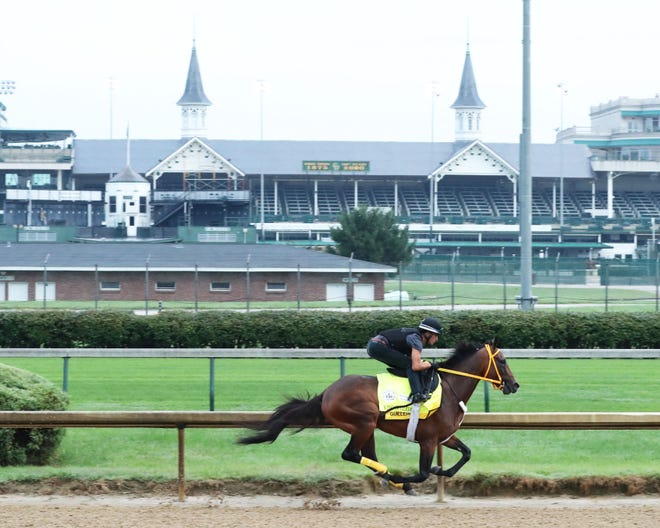 Kentucky Derby hopeful King Guillermo and jockey Miguel Mena breeze Saturday, Aug. 22, at Churchill Downs in Louisville, Ky.