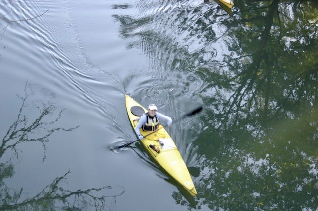 Meredith Holt Grim says paddling all 444 miles of the Susquehanna River in one trip a decade ago pushed her family toward a life of adventure and nature travel.
