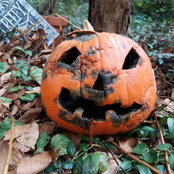 Columnist JD Walker writes that she feels like she has to be a Van Gogh or Michelangelo to carve a pumpkin these days. It's not as easy as it seems.