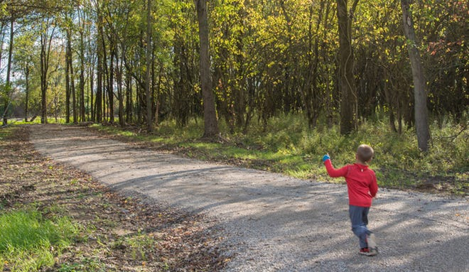 Red-tail Land Conservancy and Muncie Public Library have partnered to bring a storywalk to Dutro-Ernst Woods in early September.