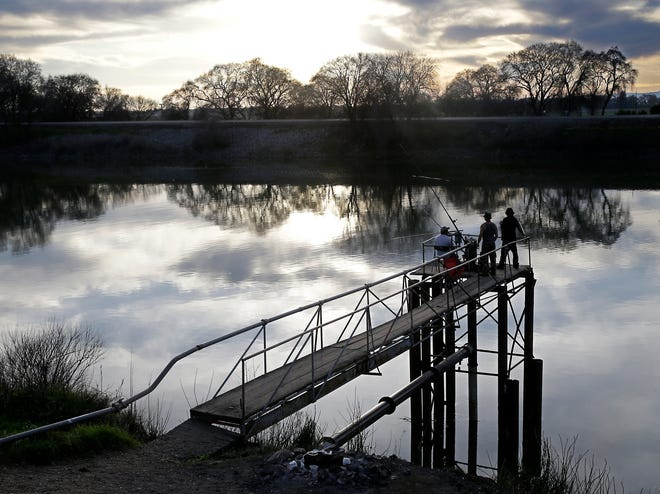 People try to catch fish along the Sacramento River in the Sacramento-San Joaquin Delta, near Courtland. [RICH PEDRONCELLI/AP]