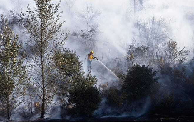 Eugene Springfield firefighters battle a stubborn brush fire between freeway ramps at Interstate 5 and Beltline Wednesday afternoon, Aug.26 in Springfield, Ore.