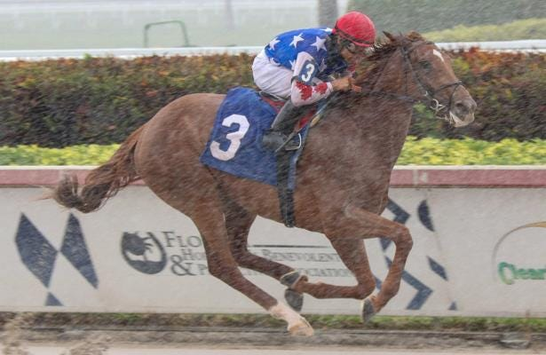 Attachment Rate and jockey Luis Saez won in the rain at Gulfstream Park on Feb. 15.