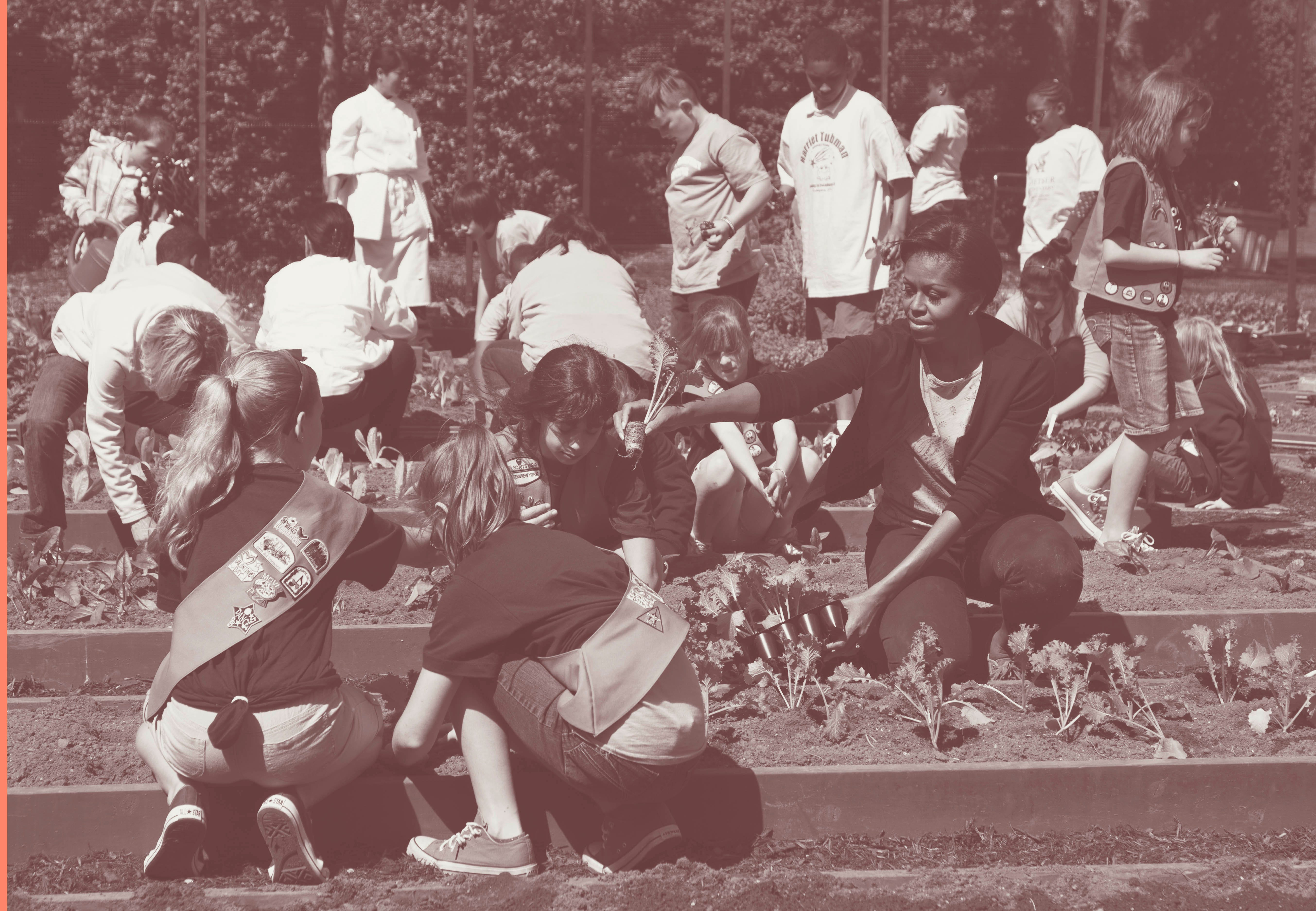 In 2012, first lady Michelle Obama plants mustard seedlings with Girl Scouts at the White House kitchen garden.