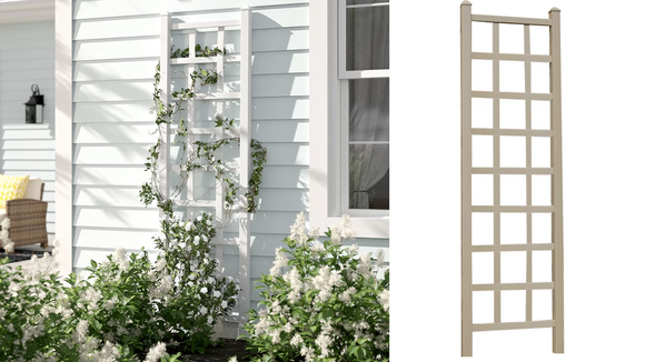 This leaning trellis makes a great support for any plant that likes to climb toward the sun