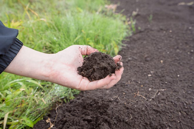 In order to understand the importance of a soil evaluation, it's good to know how a septic system works.