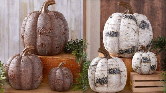 These unique-looking pumpkins will stand out on your table.