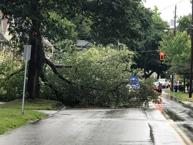 A thunderstorm that came through Wooster on Friday afternoon knocked this down on Bever Street south of Bowman Street. It also brought down a power line and knocked out power for some city residents.