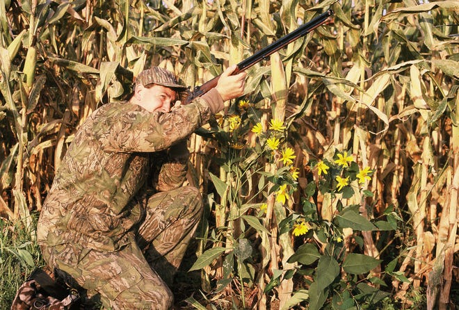 This hunter used a blackpowder shotgun to harvest his doves.