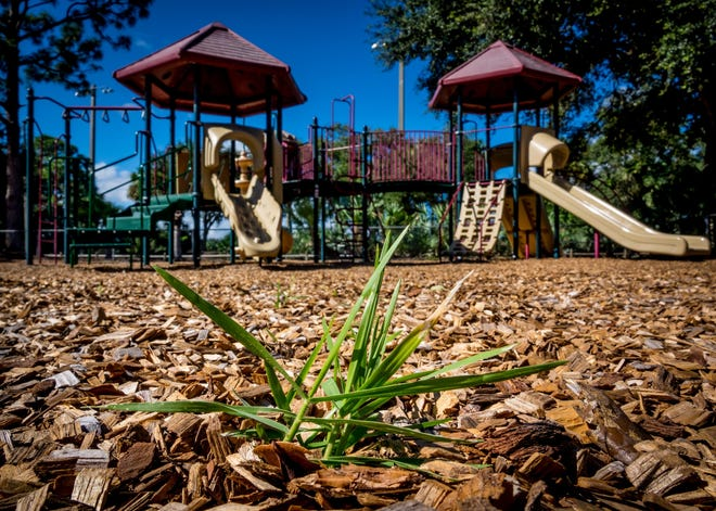 The playground area in Jupiter Community Park on Thursday November 7, 2019.  [RICHARD GRAULICH/palmbeachpost.com]
