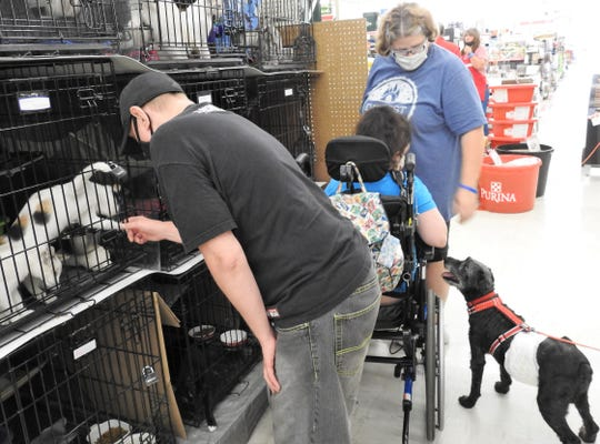 Michael Pettit, Karyssa Lunder and Julie Robinson look at animals of the Coshocton County Humane Society at Tractor Supply Co. There are about 25 cats available for adoption now.