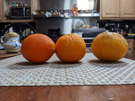 Oranges photographed on Google Pixel 4A phone