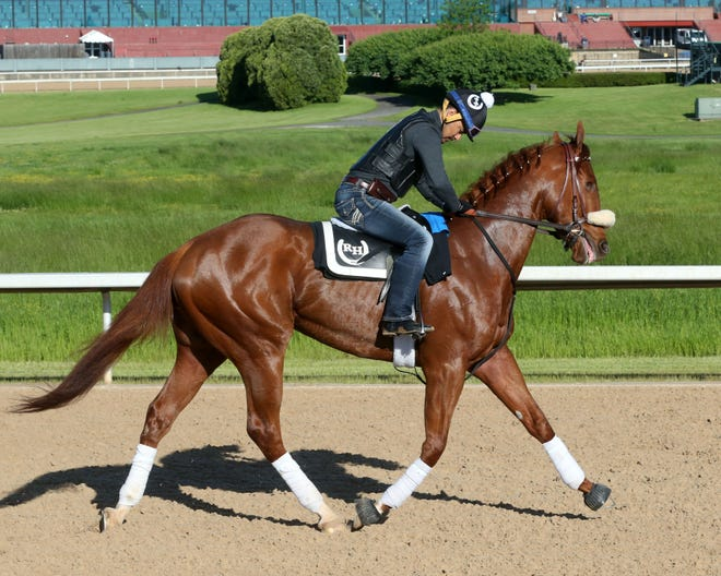 Finnick the Fierce was born with a congenital cataract in his right eye and ultimately had it removed. He'll enter the Kentucky Derby off a seventh-place finish in the Blue Grass at Keeneland.