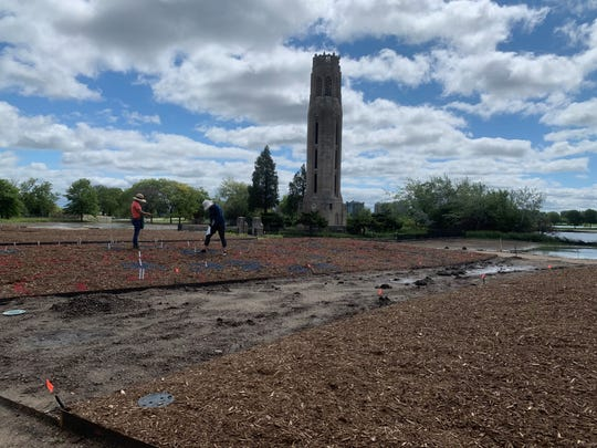 Crews lay out what plants will go where at the new Oudolf Garden Detroit on Belle Isle.