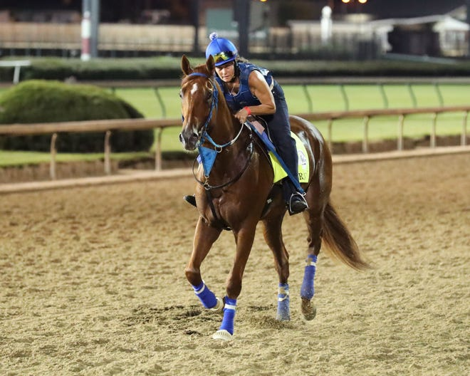 Necker Island and rider Hillary Hartman jogged at Churchill Downs on Thursday. Necker Island enters the Kentucky Derby off a third-place finish in the Ellis Park Derby.