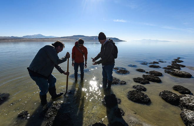 In this Nov. 2017 photo, researchers gather rock-like structures along the shores of at the Great Salt Lake that are formed by cyanobacteria known as microbialites.  Bold water conservation strategies and changes in long-standing law and water policies are needed to slow the alarming shrinking of the Great Salt Lake. A recent report from an by an advisory panel found upstream diversions have long prevented vast quantities from replenishing the lake, reducing the lake by half its normal size with further declines predicted.   (Francisco Kjolseth/The Salt Lake Tribune via AP)