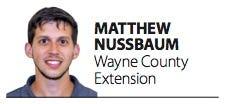 Matthew Nussbaum