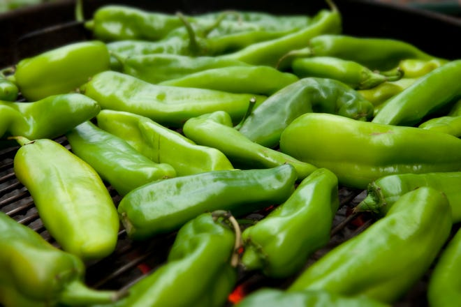 Hatch green chiles are in season this fall.