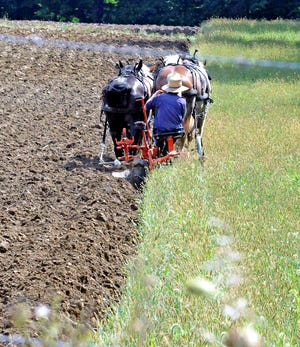 This farmer near Mount Hope is busy plowing his field Tuesday to get ready for fall planting.