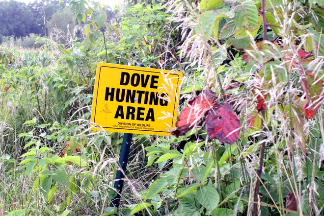 The Ohio Division of Wildlife has two fields set up specifically for dove hunting in the Killbuck Marsh Wildlife Area in Wayne and Holmes counties. One is at the corner of Force and Valley roads, while the other is off Clark Road on Valley Road north of the pond. Dove hunting is split into two seasons: Sept. 1-Nov. 8, and Dec. 12-Jan. 1. The daily bag limit is 15.