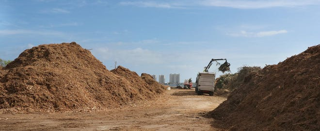 Mountains of mulch can be seen along the banks of the Riverwalk Park in Port Orange where crews are working nonstop turning piles of debris into mountains of mulch Wednesday November 2, 2016.