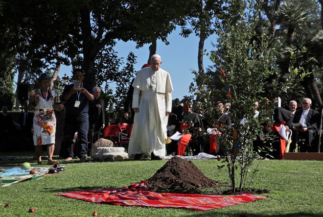 """Pope Francis walks towards a newly-planted oak tree Oct. 4, 2019, during a tree-planting ceremony on the occasion of the feast of St. Francis of Assisi, the patron saint of ecology, at the Vatican. The COVID-19 pandemic has shown how the Earth can recover """"if we allow it to rest"""" and must spur people to adopt simpler lifestyles to help the planet, which is """"groaning"""" under the constant demand for economic growth, Pope Francis said Tuesday in his latest, urgent appeal to help a fragile environment."""