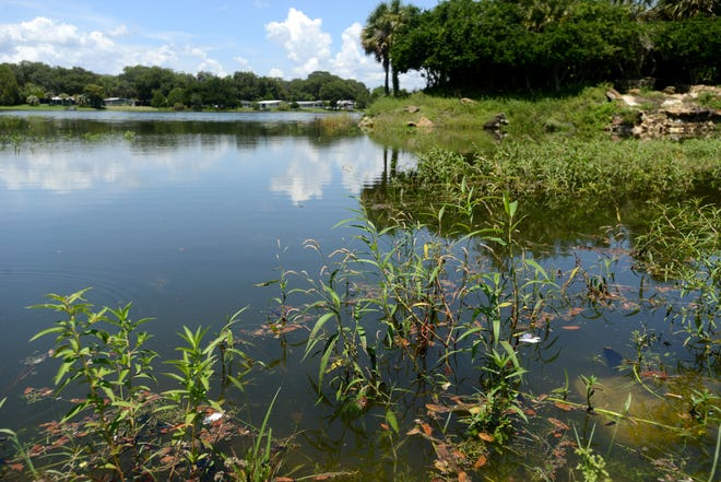 Gov. Ron DeSantis has been slow to fill vacancies on Florida's water management district boards, which oversee water quality and supply in the state. AMBER RICCINTO / DAILY COMMERCIAL