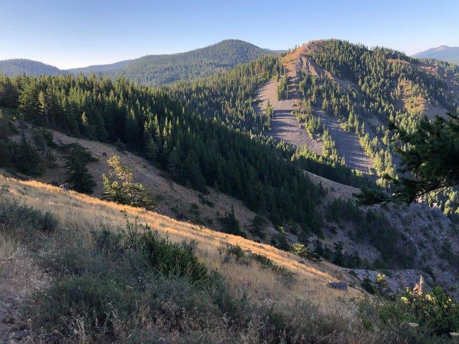 Surveyor's Ridge