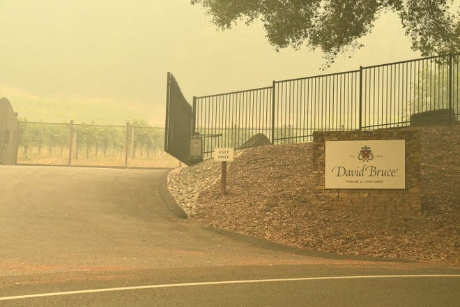 David Bruce Winery, which has resided in the Santa Cruz mountains for decades, was inundated in smoke and ash from the CZU Lightning Complex Fire. Aug. 22, 2020.