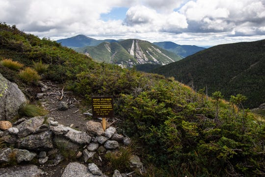 Certain areas of the summit of Wright Peak are closed off to hikers to protect fragile alpine vegetation.