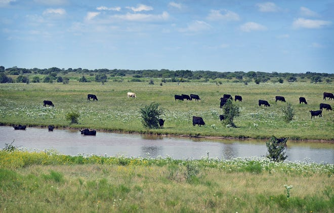 The deadline to apply for the USDA FSA CFAP 2 program is Dec. 11. The program provides direct relief to farmers and ranchers who were financially affected by COVID-19.