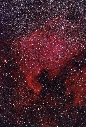 The famed North American Nebula (NGC 7000) in Cygnus, somewhat resembles the continent. At right is the Pelican nebula.