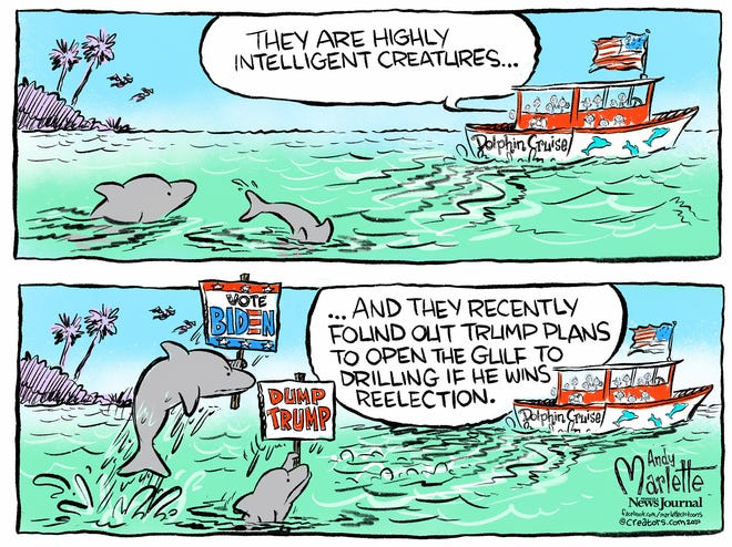 Dolphins have Trump figured out