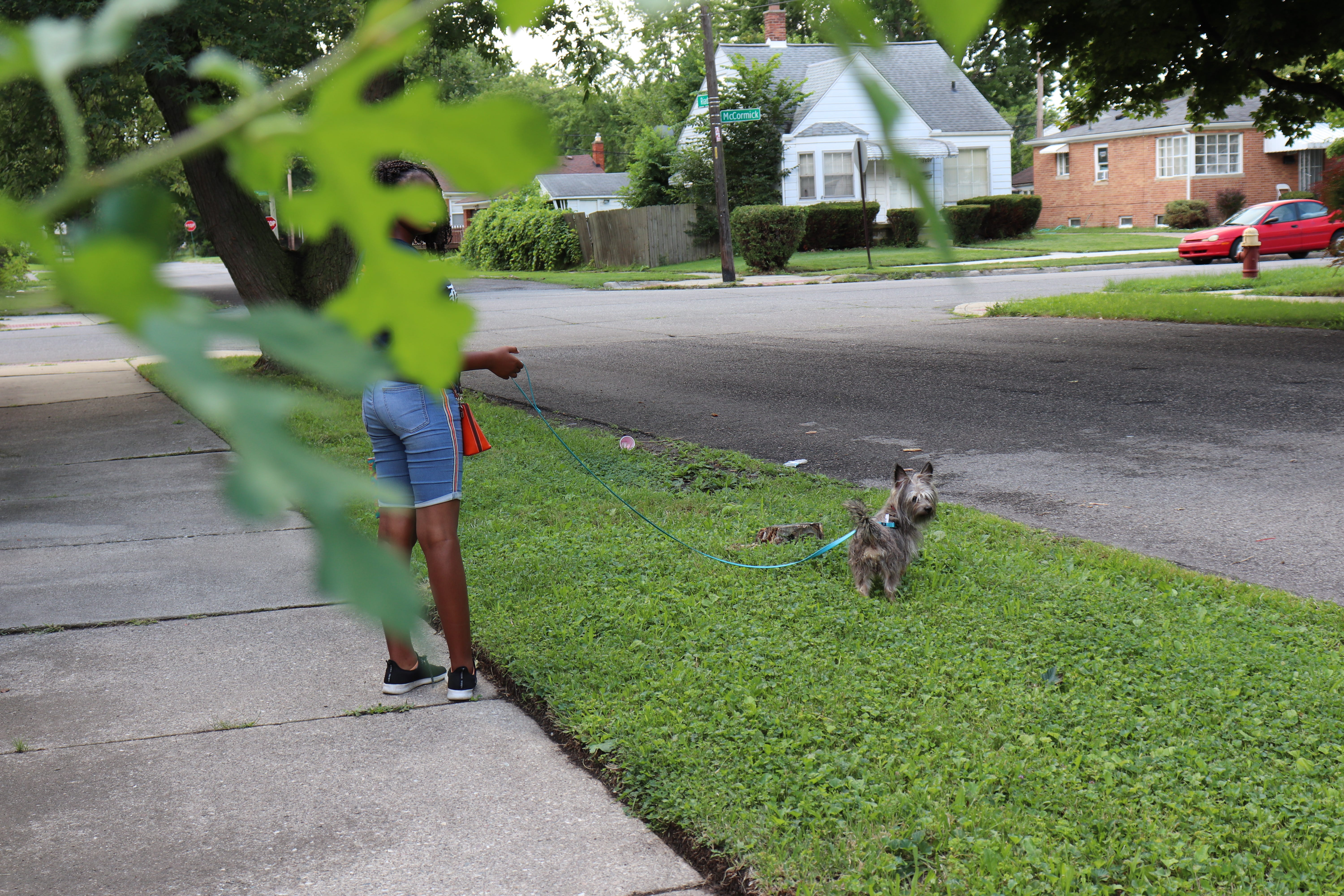 Our dog Jet was whining so my sister, Rahmani, 13, and I took him for a walk outside our home in Detroit. I was drawn to the leaf in the foreground so I decided to add it into the picture. When my dog turned to the camera as if he knew I was taking a picture, it made the moment even more special.
