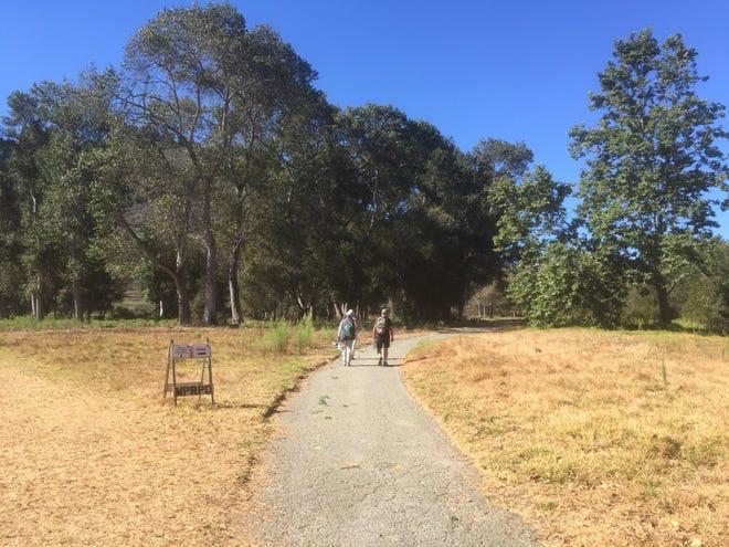 Hikers in Palo Corona Regional Park in Carmel.