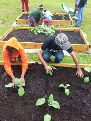 CSF celebrates Earth Day 2017 by planting a garden at FAMU's Developmental Research School.