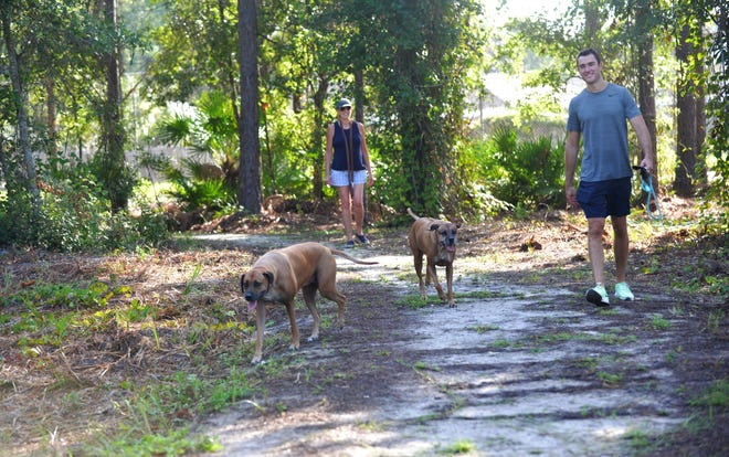 Kim and son Charley Schooley walk Whisky and Kai, a pair of Rhodesian Ridgebacks, on a trail at the new Jacksonville dog park that opened Labor Day weekend at Abess Park just off Girvin Road and Atlantic Boulevard. The large-dog section has a loop trail and a grassy area for free play.