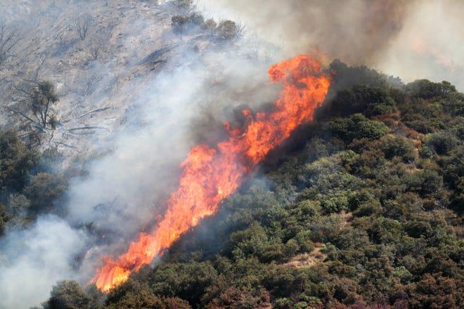 The El Dorado Fire burns in the San Bernardino National Forest near Oak Glen, Calif., on Sunday, September 6, 2020.