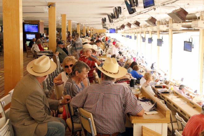 Fans in the Club Level seats watch the races at the Ruidoso Downs Racetrack on Sept. 7, 2020.