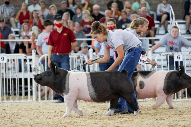 Keely Malone wins the Iowa State Fair Grand Champion Market Hog during the 2020 Fair Special Edition: Iowa 4-H and FFA Livestock Show in Des Moines. Keely is the daughter of Jeff and Shayla Malone of Mount Union.