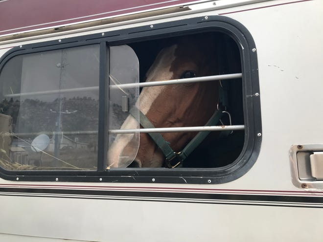 Towing horses can be 'no big deal' until there is an emergency. USRider Equestrian Motor Plan is ready to be of assistance.