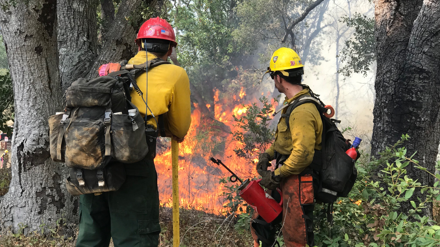 Sheriff's Office orders residents evacuate in advance of Big Sur's Willow Fire