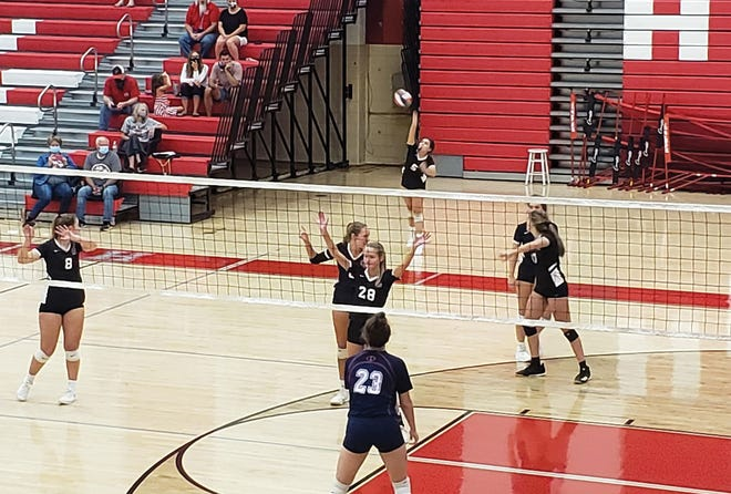 Junior Sydney Ward serves the ball in the district game against the Halls Red Devils on Thursday, Sept. 3.Special to The Oak Ridger