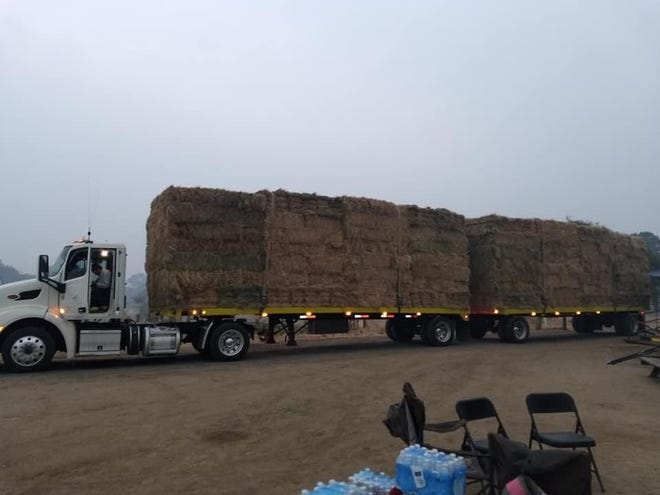 Western Milling, a feed company based in Goshen, donated about a couple week's worth of hay to help to feed animals who were displaced by the Creek Fire.