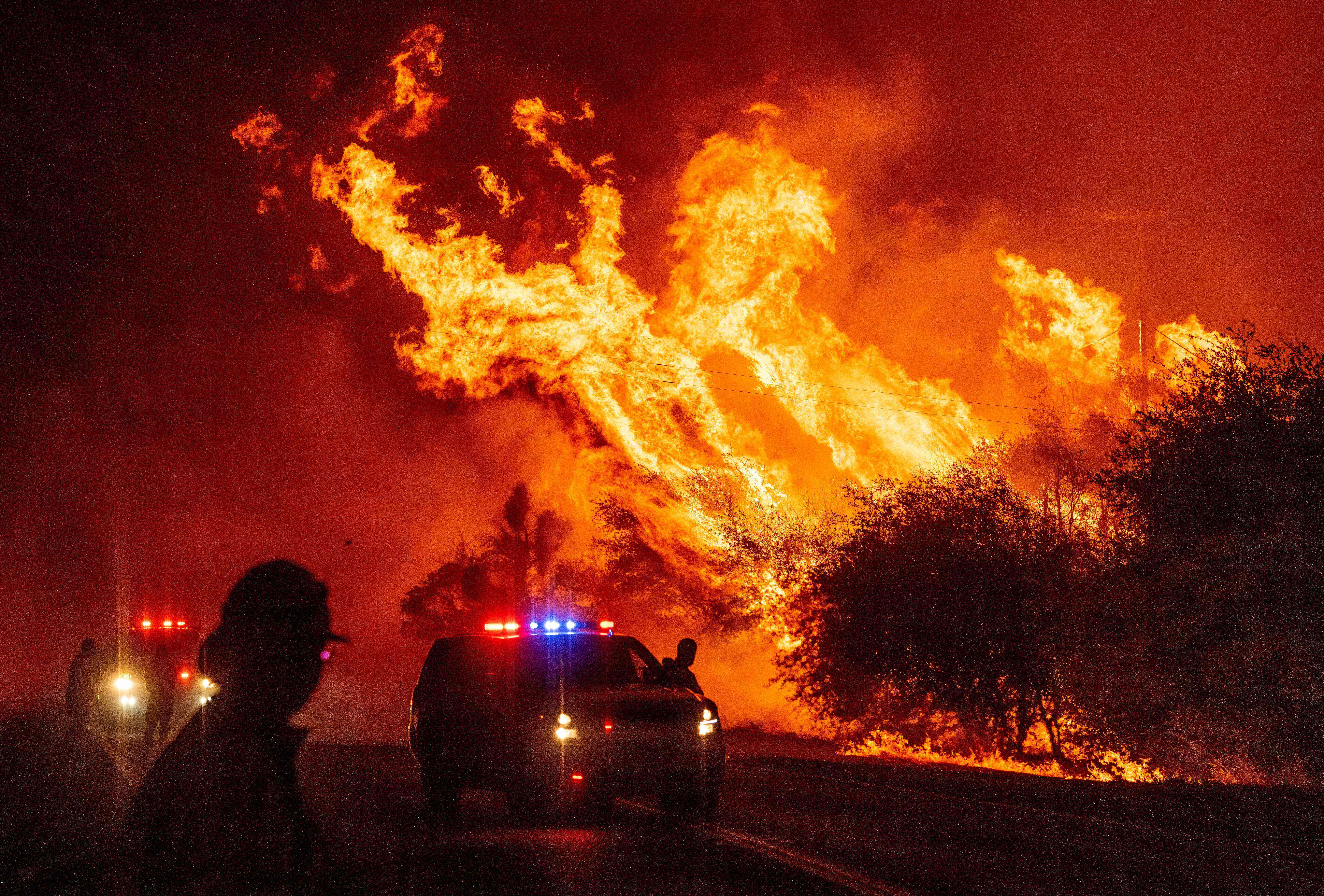We could hear the trees exploding : Deadly swath of wildfires rage in the West; death toll rises to 6
