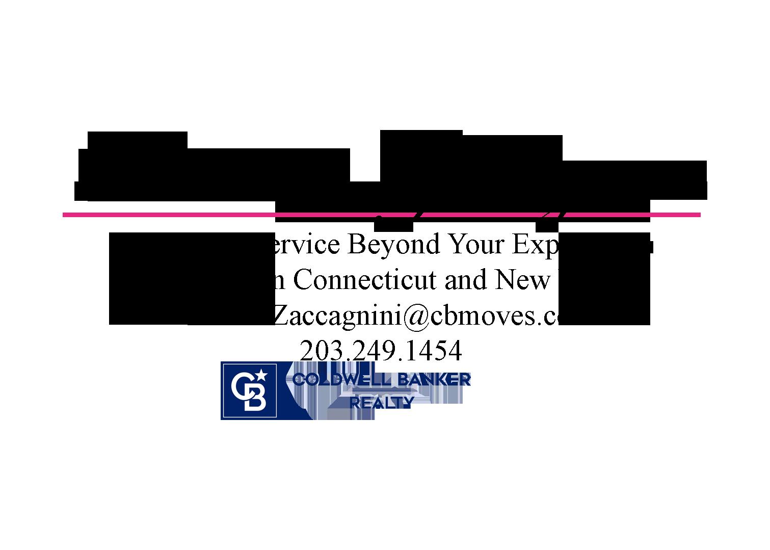 Barbara Zaccagnini Real Estate Logo