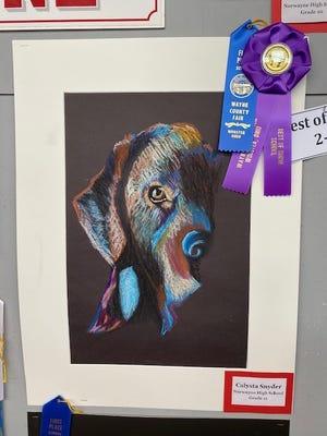 Calysta Snyder, grade 11, Norwayne High School, won Best of Show 2D Art Award in the Wayne County Fair High School Art contest.