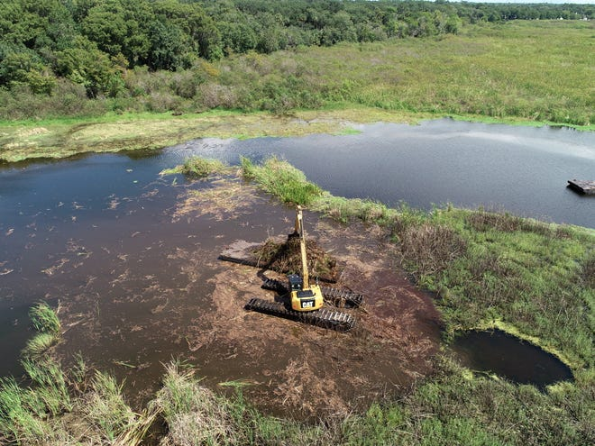 The pilot project, which plans to use a mechanical harvester to remove invasive vegetation and exotic plants, has begun. Although it officially started June 22, water levels were not high enough to ensure the mechanical harvester would work properly.