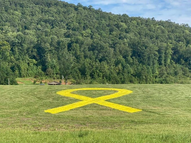 Jeff and Amy Moman cut and painted a massive Childhood Cancer Awareness Ribbon on the hillside in front of their home to call attention to the disease.
